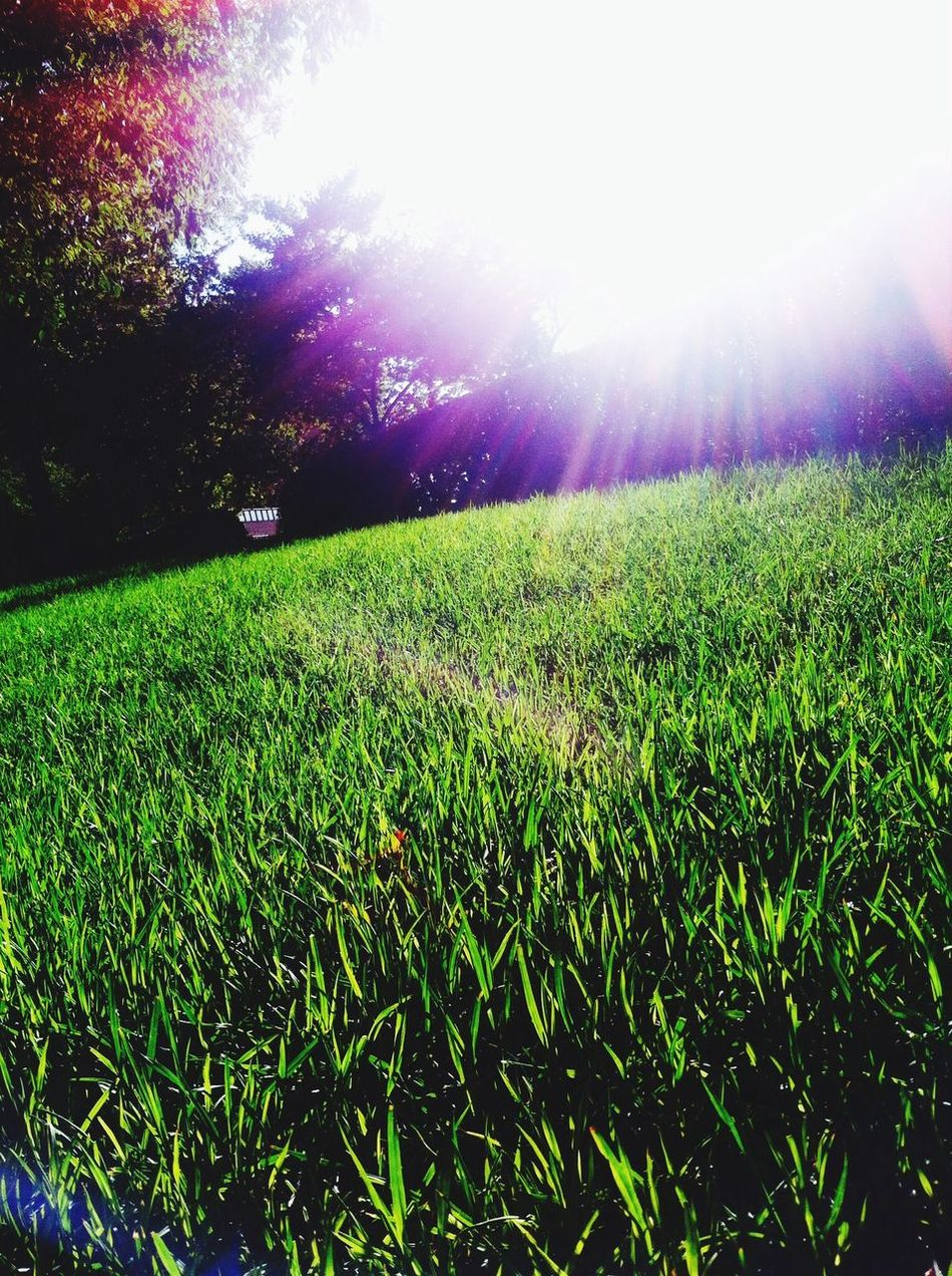 Have a sunny week!!! Enjoying The Sun