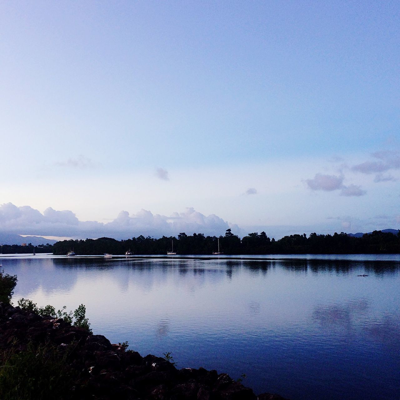 tranquil scene, nature, lake, water, tranquility, beauty in nature, scenics, reflection, no people, outdoors, sky, tree, day