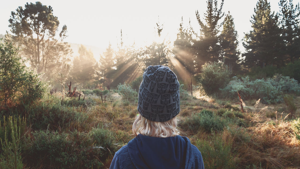 Beauty In Nature Boy Casual Clothing Field Forest Grass Growth Hike Landscape Pivotal Ideas Lifestyles Nature Plant Scenics Sky Standing Sun Sun Rays Sun Streaks Sun Stream Sunlight Tranquil Scene Tranquility Tree View