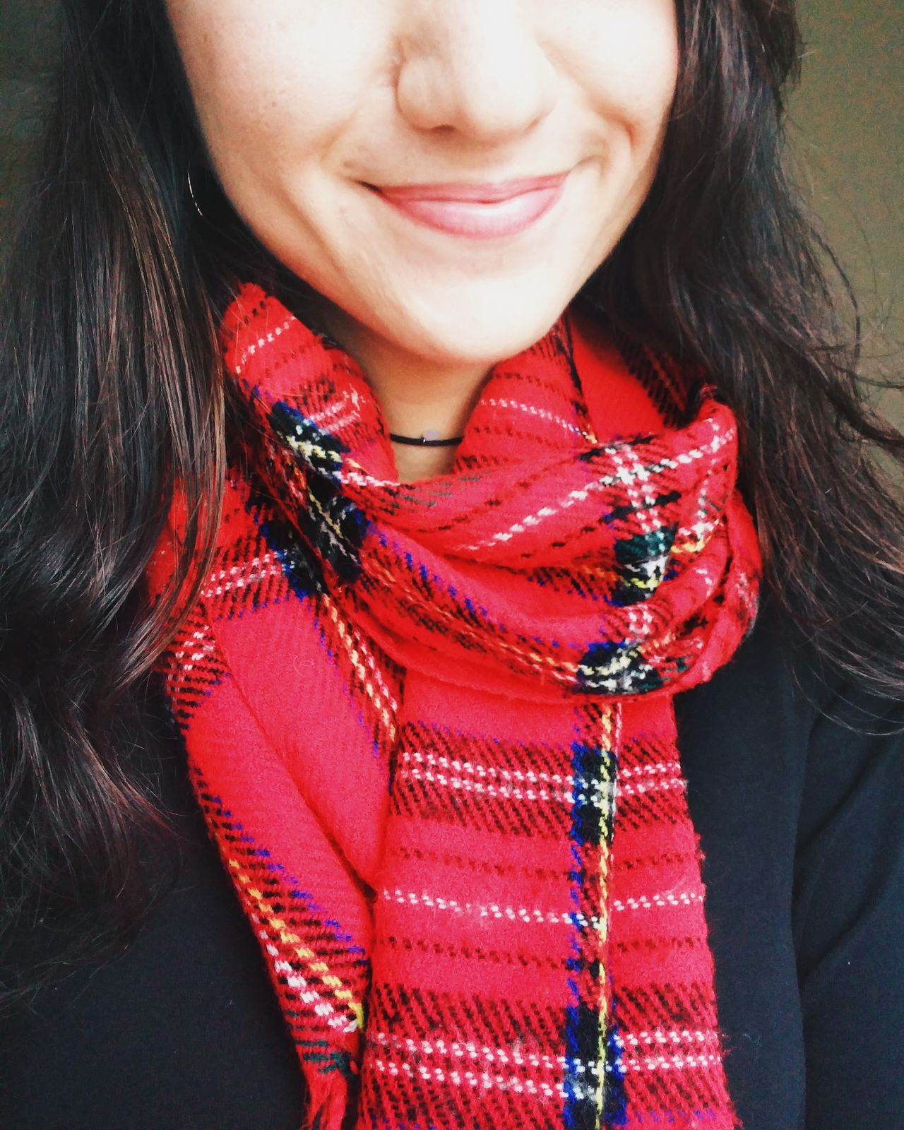 Red One Person Close-up One Woman Only Adult Smiling Women Indoors  Young Adult Beautiful Woman Lips Lipstick Red Scarf Winter Winter Fashion Fashion Christmas Lieblingsteil