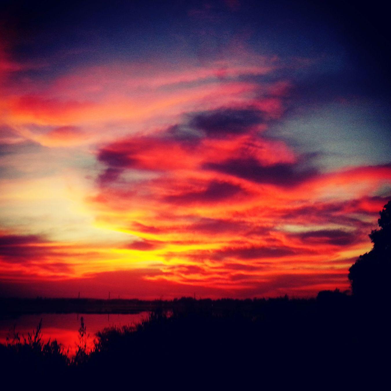 Lovely Weather EyeEm Best Shots Sunset Spectrum Clouds And Sky EyeEm Nature Lover Enjoying The Sun Beautiful Day First Eyeem Photo