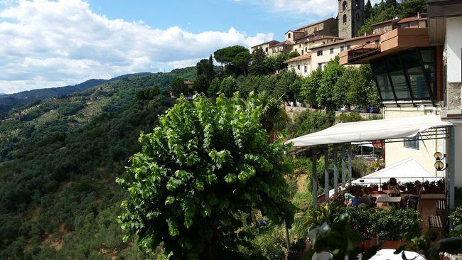 Montecatini Terme Tuscany Greenery