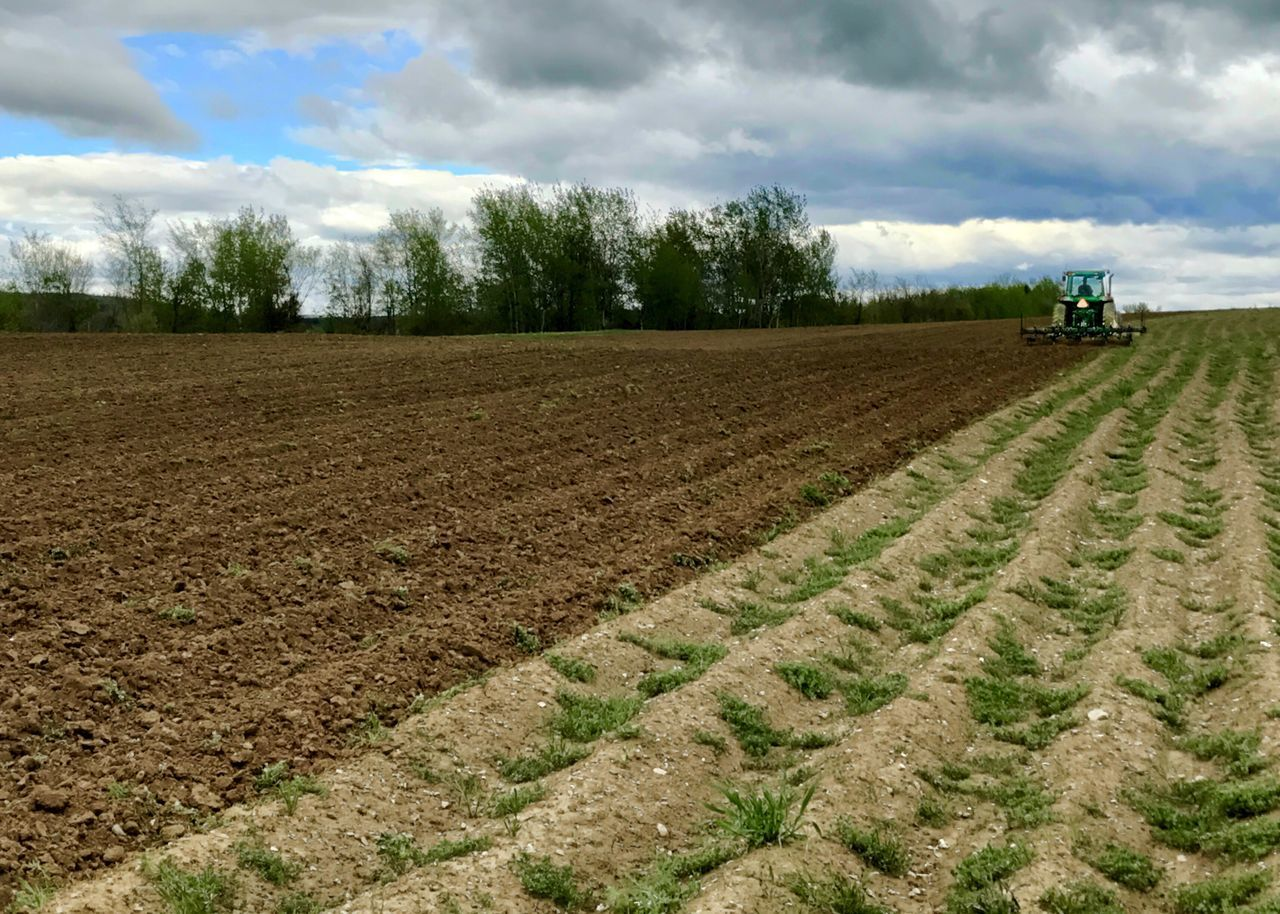 Tractor prepping ground before planting. Agriculture Field Tractor Rural Scene Farm Sky Landscape Plough Horizontal Plowed Field Crop  Agricultural Machinery Outdoors