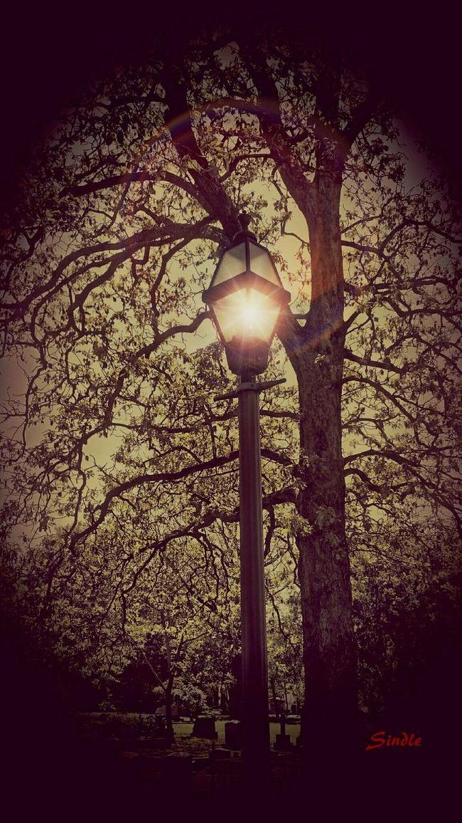 Ghost Light Photo Manipulation Cemeteryscape Art The Illuminator - 2014 EyeEm Awards