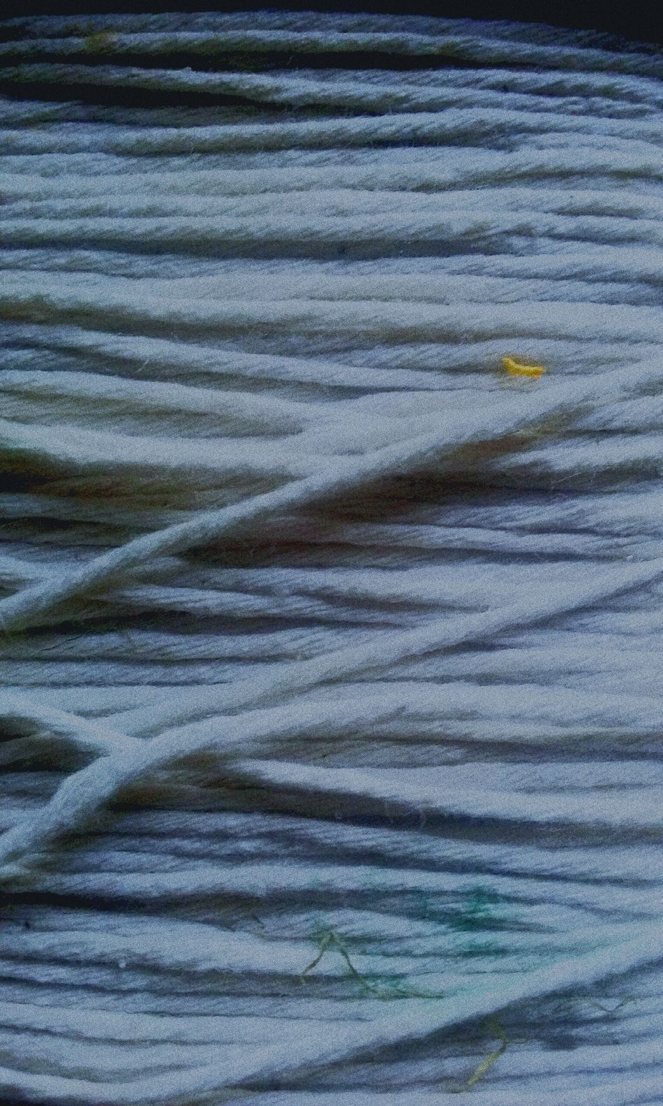 Backgrounds Close-up Repetition Freshness Day Outdoors Twine, Cord, Yarn, Thread, Strand, String