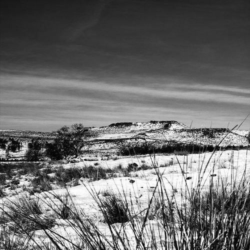 Desolate snow covered hills under a clear & wintery sky Derbyshire Dales Longshaw Estate Peak District Northern England Windswept Moors Cold Temperature Landscape Marram Grass Nature Outdoors Scenics Snow Tranquil Scene Tranquility Windswept Hills Winter