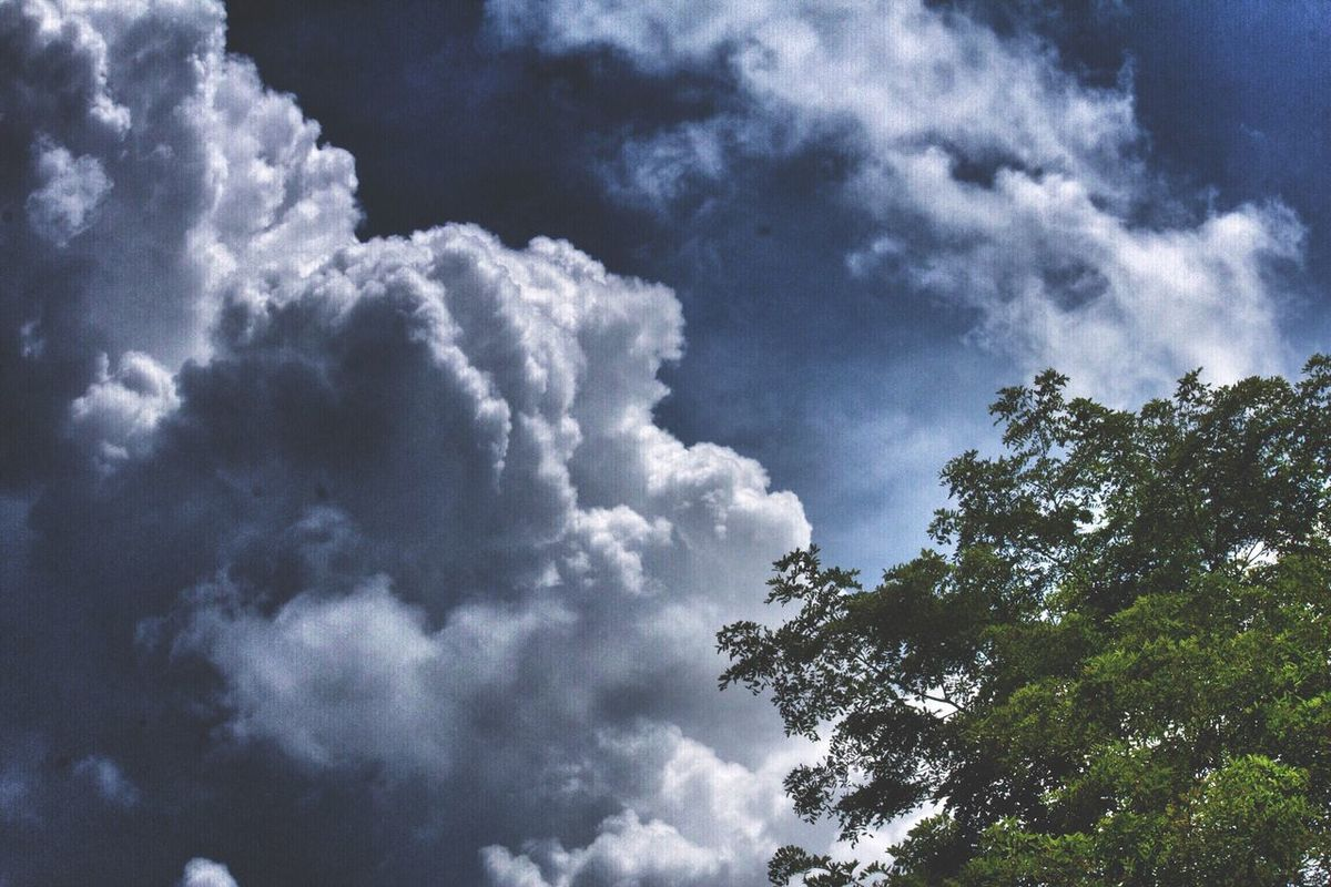 Stellar dude ✨ Hanging Out Clouds Storm Nature Outdoors Check This Out Hello World Adventure Canon Taking Photos