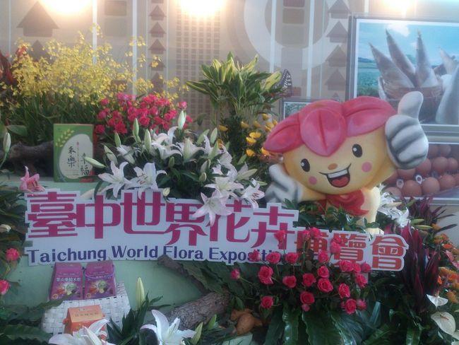2015新社花毯 新社花海 Flowers