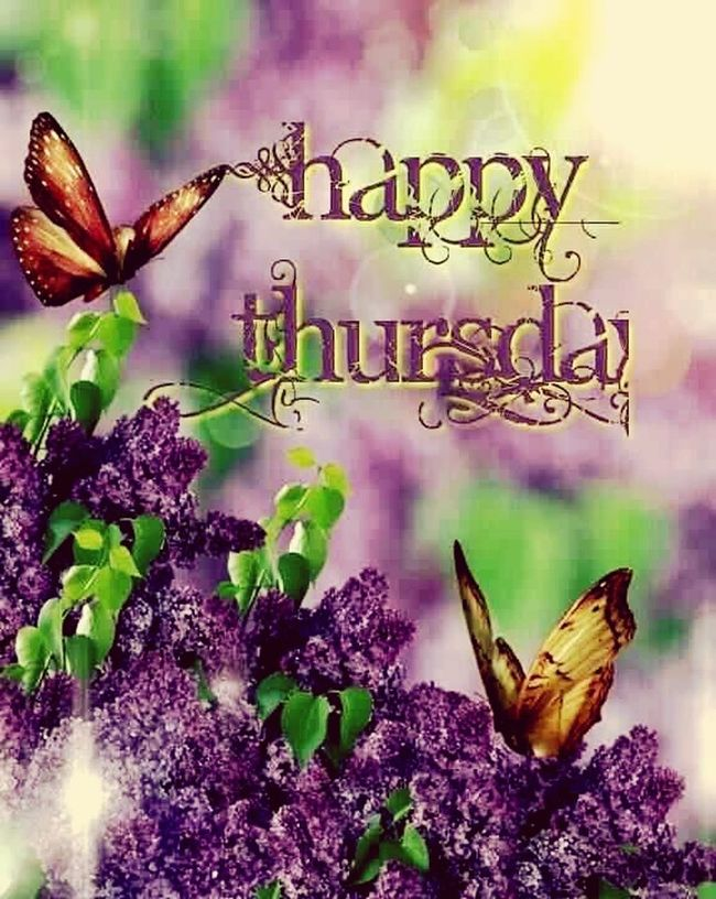 Good morning friends its a nice n wet day have a bless one