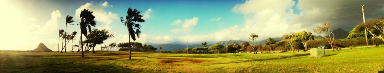 Beautiful stock photos of hawaii, Cloud, Cloudy, Day, Field