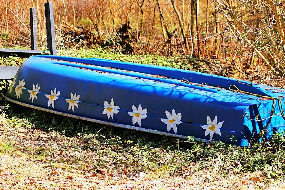 Boat without water ⛵ Little Boat Ship In The Dock Nature Photography EyeEm Nature Lover EyeEm Best Shots - Nature Romantic Places From My Point Of View Hanging Out Little Things Flowers Flowers On A Boat Taking Photo Take Photos Romantic Silhouettes Hello World Taking Photos Lake View