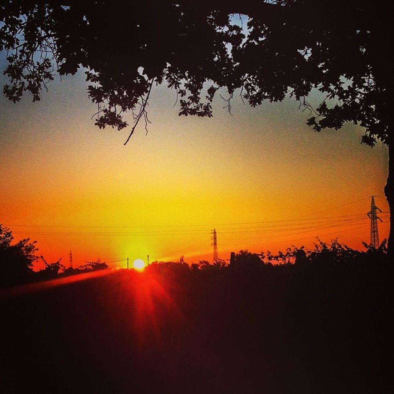 Same sun, totally different landscape! #lifeisbeautiful, anyway! #sunrise #pianurapadana #italy #silhouette #igersreggioemilia #iphonography #instapic #webstapick #meshpics