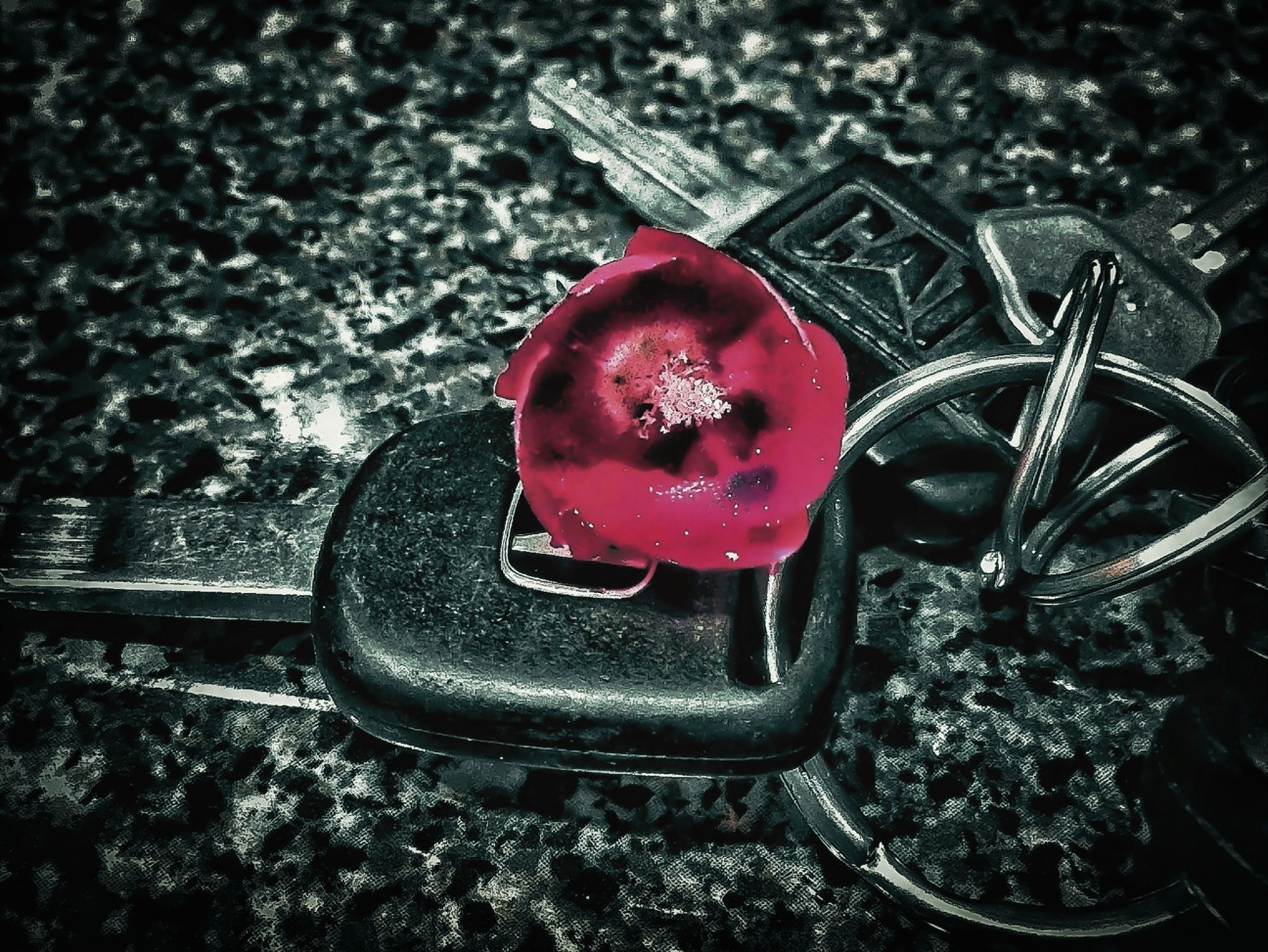 red, high angle view, close-up, freshness, still life, flower, land vehicle, focus on foreground, transportation, day, no people, food, pink color, outdoors, car, food and drink, metal, mode of transport, auto post production filter, strawberry