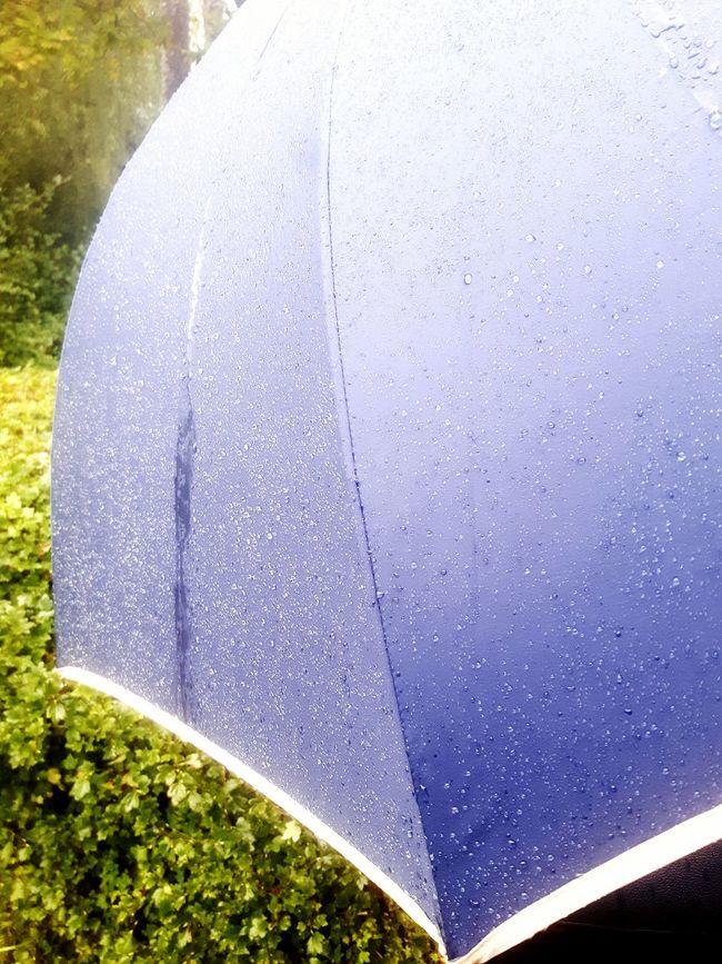 Umbrella Umbrella Revolution Rain And Sun Rainy Days Rain Raindrops Rain Drops Rainy Day UmbrellaGirl Blue Umbrella Walking Around Picnic Rainy Raining Drizzled With Rain Drizzle Colour Of Life