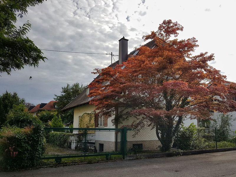 German House Freilassing Walking Around Taking Photos S7 Edge Photography