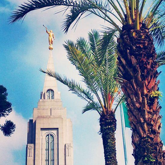 Mormon Temple Lds Temples