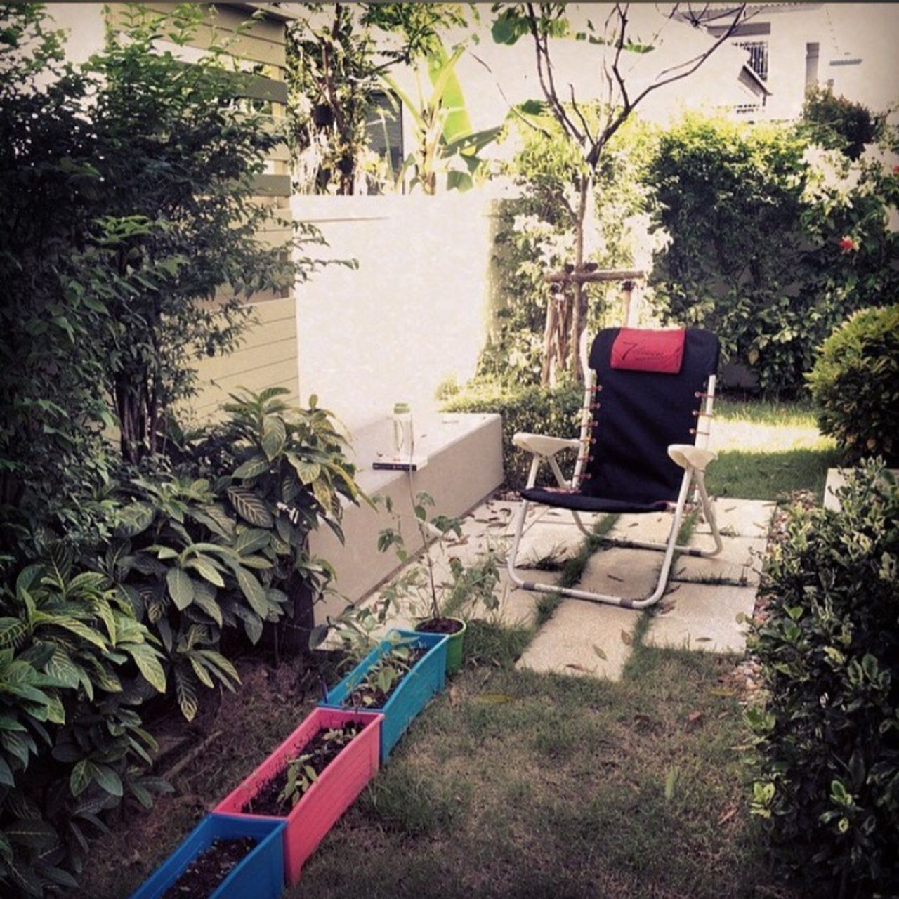 Plant Tree Chair Architecture Built Structure Day Outdoors Building Exterior No People Growth Nature The Great Outdoors - 2017 EyeEm Awards Garden Chair Relaxing Comfy  Corner Outside In The Garden Mood Of The Day