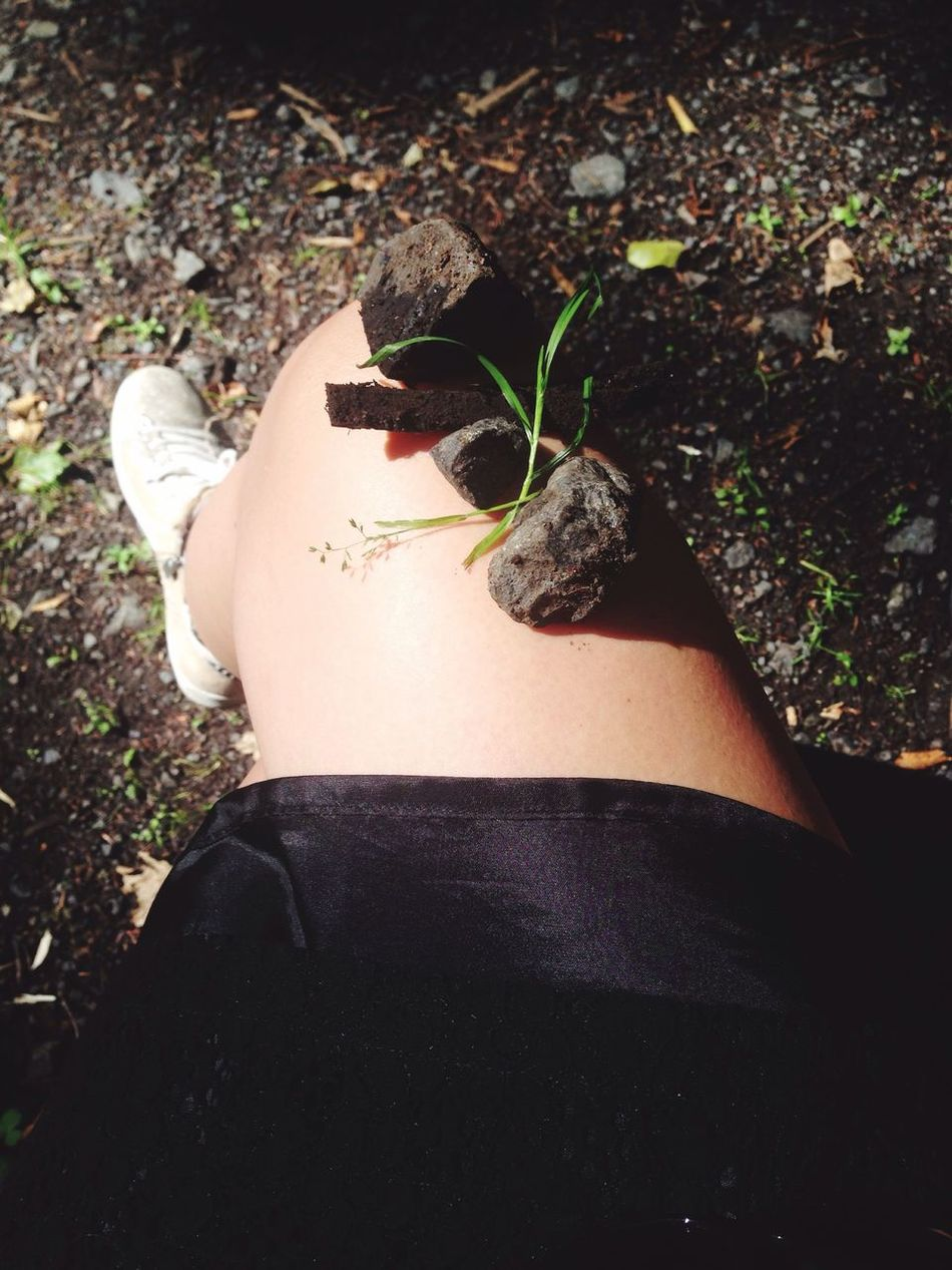 Nature On My Leg Walking In The Woods