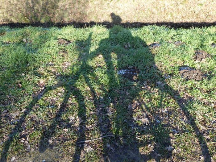 😆fun in the sun To Cheer You Up  To Cheer Me Up😎 Sooo Cold!! Sun In Winter..😍😍😍 Sunny Winterday I Feel Great😂 Think Big Dream Big Shadowselfies My Shadow And Me For My Friends😚 Funshot Shadow High Angle View Sunlight Outdoors No People