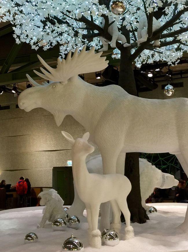 Berlin Detail Enjoying Life X-mas Time Christmas Spirit X-mas Decoration Smile ✌ Taking Photos Is It Real? Shopping