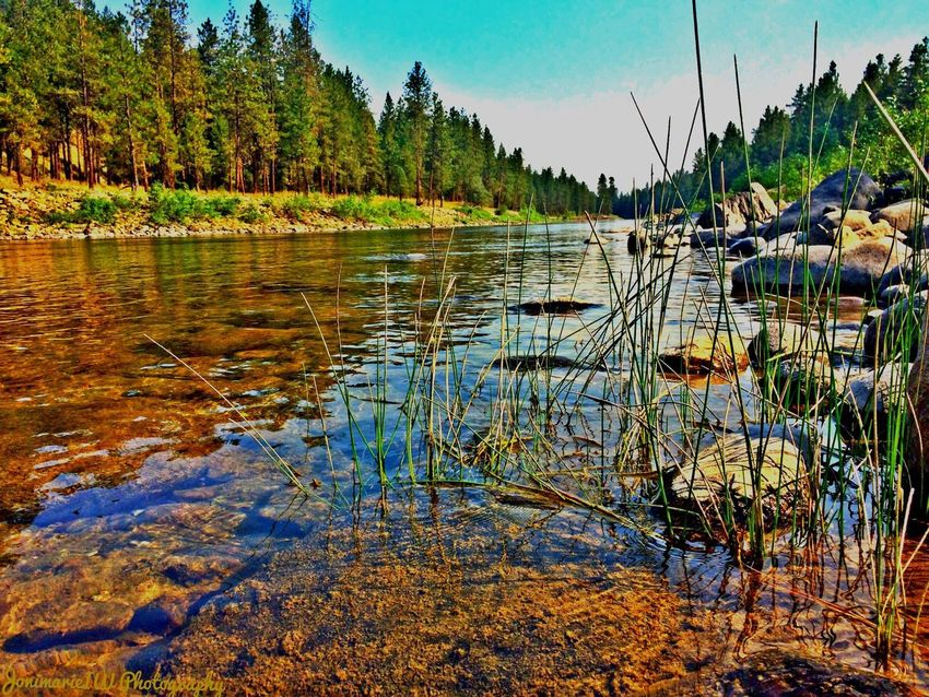 Kettle River beauty EyeEm Nature Lover Random Reflections What Does Peace Look Like To You? Mission Mystery