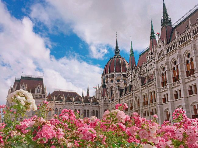 My favorite spot in Hungary so far!! I would love to spend my every morning walking around or sitting on the bench to enjoy the beauty. Amazing Europe Enjoying Life Colorful Budapest Architecture Building Bestoftheday Great Atmosphere Flowers