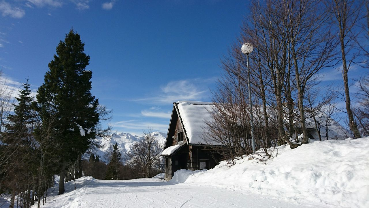 Mountain cottage covered with snow Tree Snow No People Outdoors Ski Travel Destinations Europe Idyllic Scenics Copy Space Vogel Built Structure House Mountain Cottage Nature Snow ❄ Slovenia Day Sky Cold Temperature Winter Landscape Holiday Ski Holiday