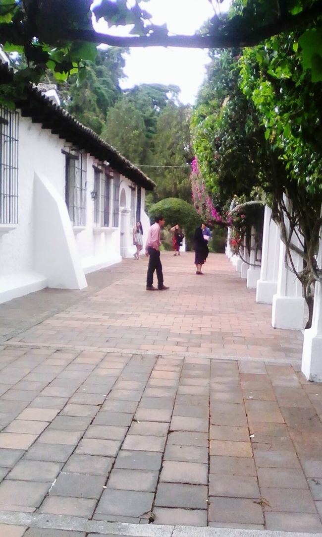 Cityoftraditions Colonial Era Oldcity Colonialhouses Colonial Architecture LaCasona Guatemala, City First Eyeem Photo
