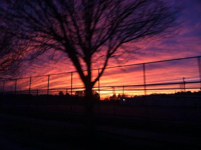 Old Sunset
