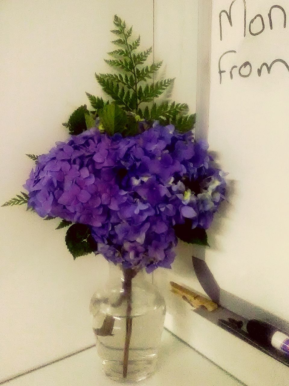 flower, vase, purple, table, indoors, no people, plant, freshness, fragility, petal, nature, close-up, growth, beauty in nature, flower head, bouquet, day