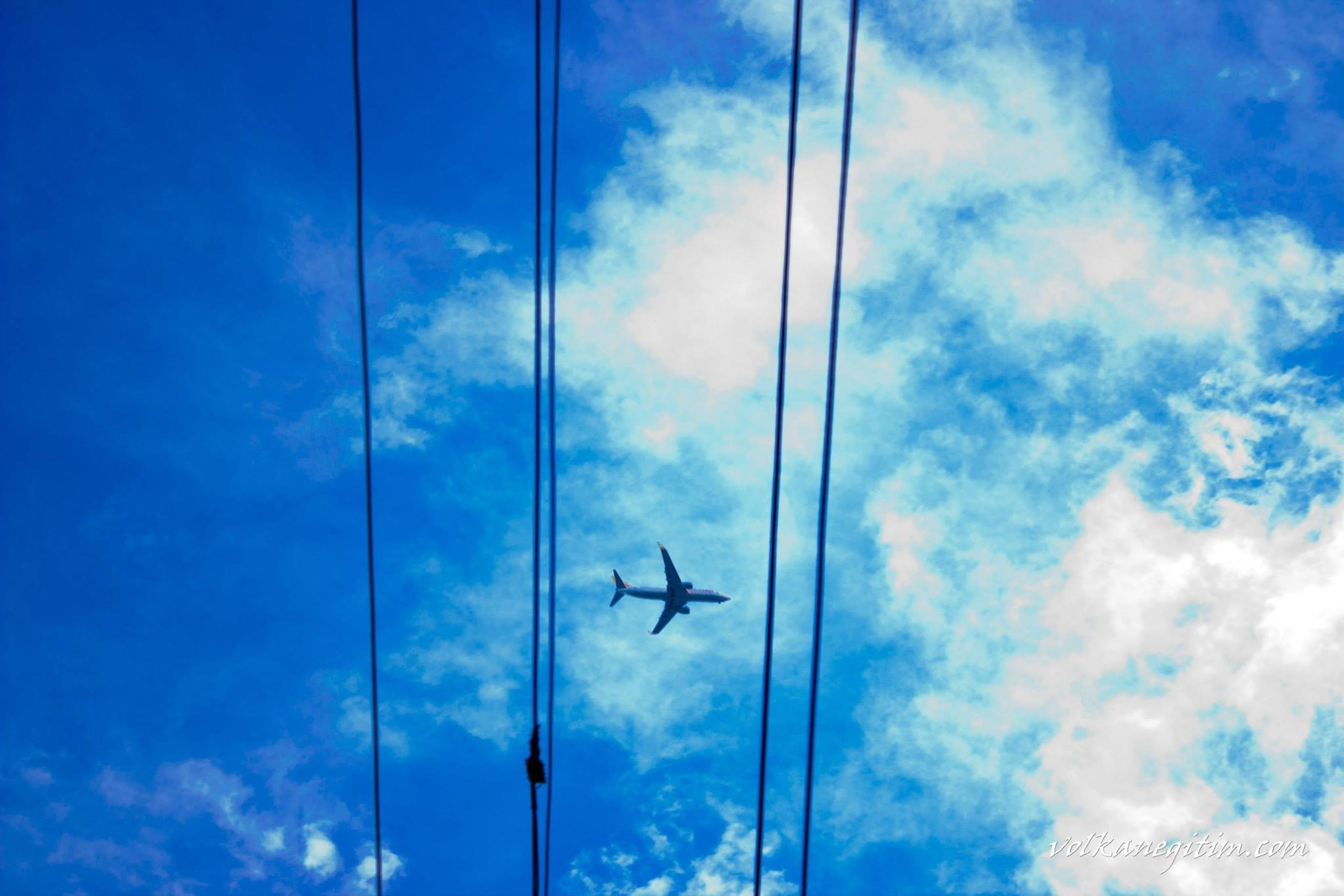 low angle view, flying, sky, transportation, airplane, mode of transport, cloud - sky, air vehicle, blue, mid-air, cloud, cloudy, on the move, public transportation, bird, day, wildlife, journey, animal themes, travel
