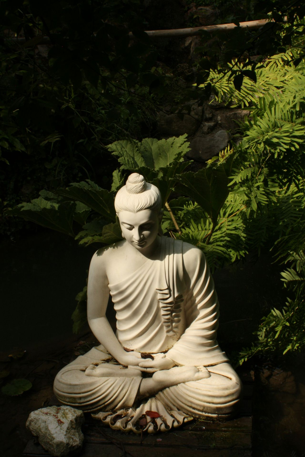 Lotus Position No People Zen Garden Bamboo Grove Tranquility Beauty In Nature EyEmNewHere No Filters Or Effects No Filter, No Edit, Just Photography No Filter Bamboo Zen Nature Outdoors Green Color Tree Plant Freshness Water Growth Buddism Buddist Statue White Color Contrasts Shadows & Lights