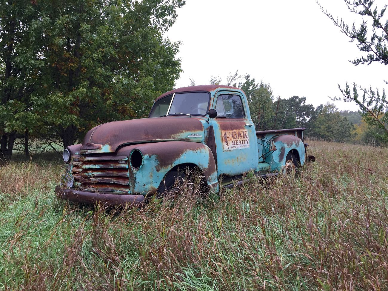 Land Vehicle Transportation Mode Of Transport Car Tree Old Damaged Abandoned Grass Obsolete Rusty Field The Past Green Color Growth Old-fashioned Stationary Plant Day Vehicle Rusty Autos Antique Retro Weathered Outdoors