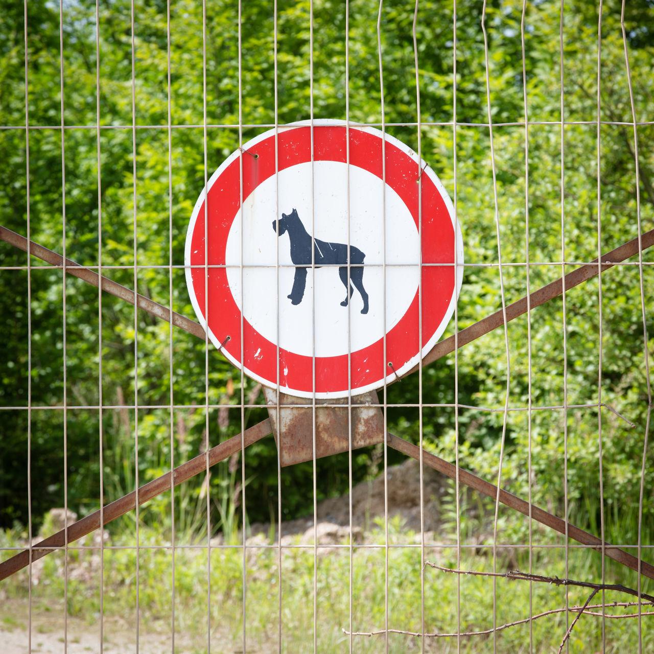 Beautiful stock photos of sign, Animal Representation, Circle, Close-Up, Communication