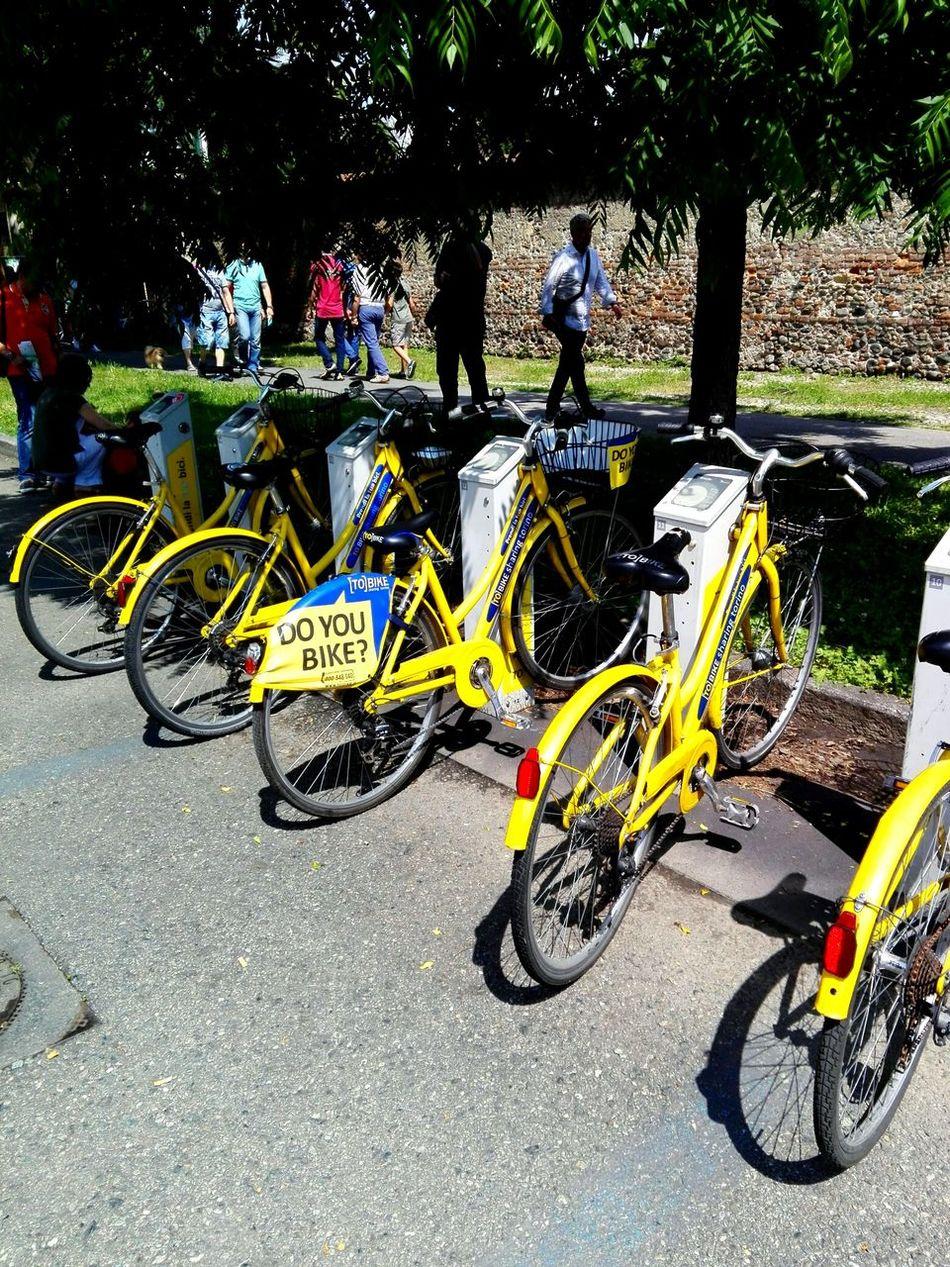 Bike Yellowbike Parcodelvalentino Biciclette Bici