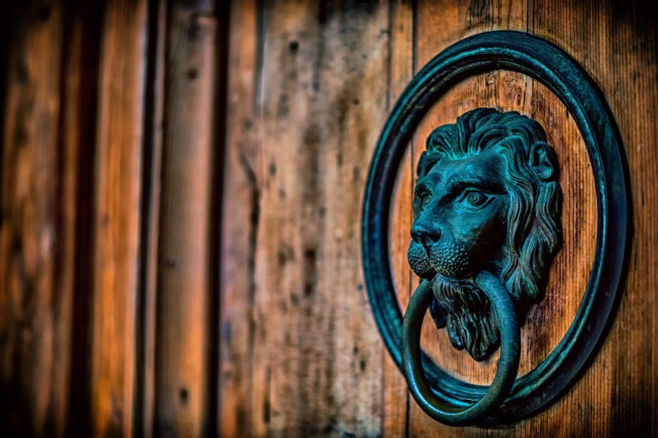 Wood - Material Door Lion - Feline No People Close-up Day Outdoors Animal Themes Available Light Art Is Everywhere Love To Shoot Go Out And Shoot HDR Hdr_Collection Nik Collection Nik Color Efex Sony Sonyalpha Austria Innsbruck Break The Mold Art Is Everywhere The Street Photographer The Architect - 2017 EyeEm Awards The Great Outdoors - 2017 EyeEm Awards The Street Photographer - 2017 EyeEm Awards The Photojournalist - 2017 EyeEm Awards