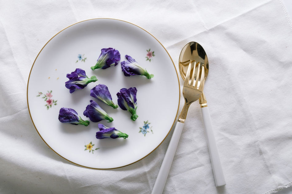 Beautiful stock photos of schmetterling, Butterfly Pea, Close-Up, Edible Flower, Flower