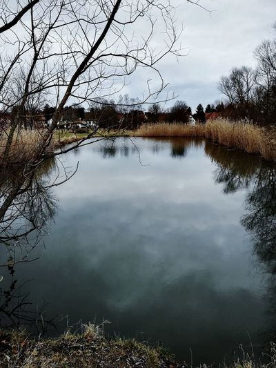 A cold and deep lake in Germany Reflection Stormy Germany Shadow Dark Cold Lake Reflecting Water Reflection Water Lake Nature Standing Water Landscape Outdoors Tree Beauty In Nature No People Sky Tranquility Backgrounds Scenics Reflecting Pool Day Mountain Fog Rural Scene Flood