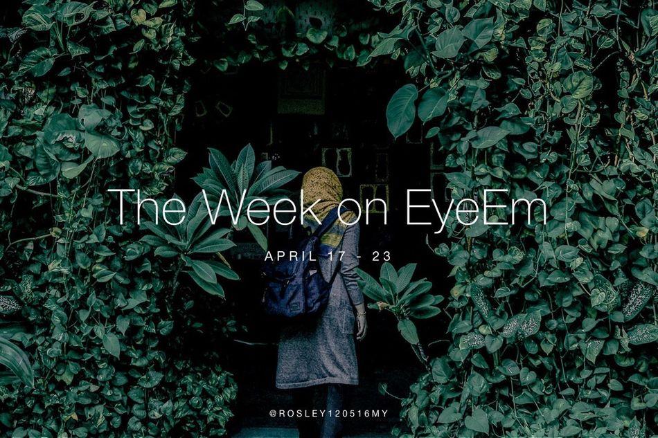 Your weekly selection of fabulous photography on EyeEm is here: https://www.eyeem.com/blog/week-eyeem-16-2017/ ✨ The Week On EyeEm ✨