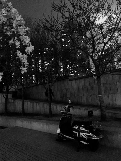 Blackandwhite Spring Nignt Hanging Out With Friends in our Depressing Day Flowers and Motorcycle