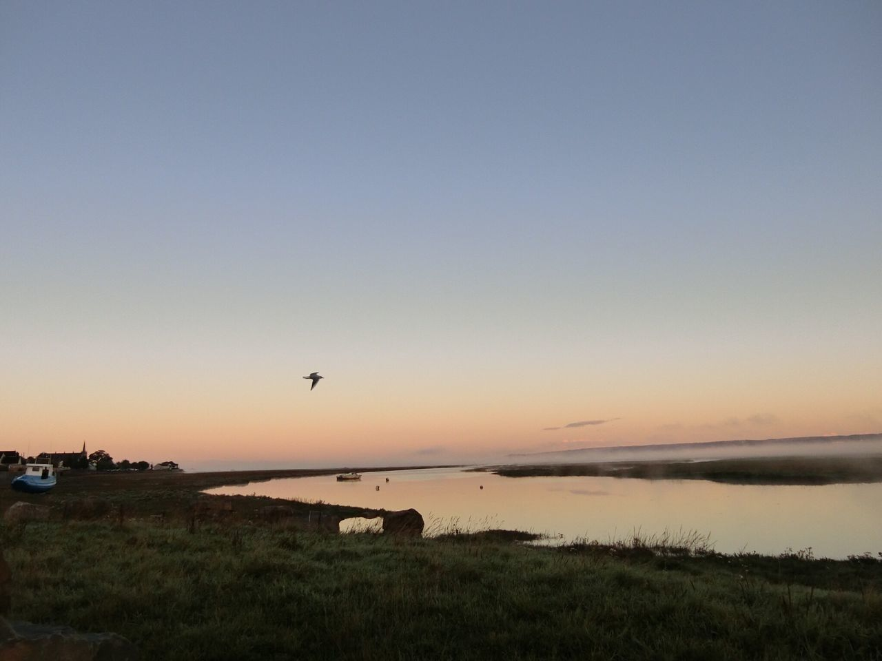 sunset, nature, beauty in nature, scenics, tranquility, animal themes, outdoors, grass, sky, tranquil scene, no people, clear sky, field, animals in the wild, bird, flying, landscape, water, day