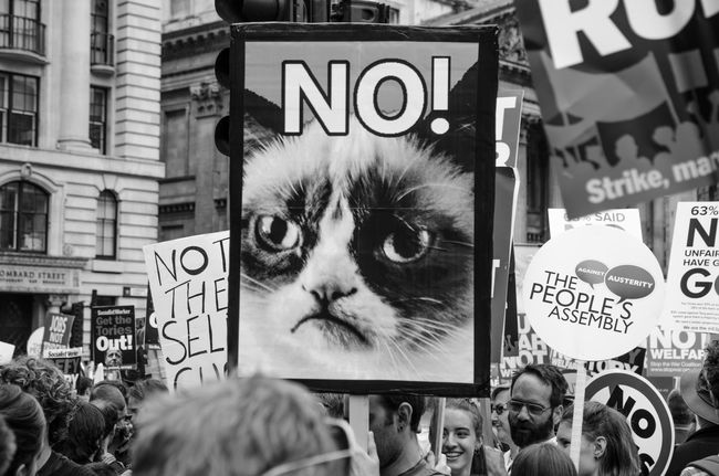 Say no to cats! London London Streets London Street Photography Streetphotography Streetphoto_bw Visual Statements Visual Stories Anti Austerity Anti Government Protest Alucyart Alucy