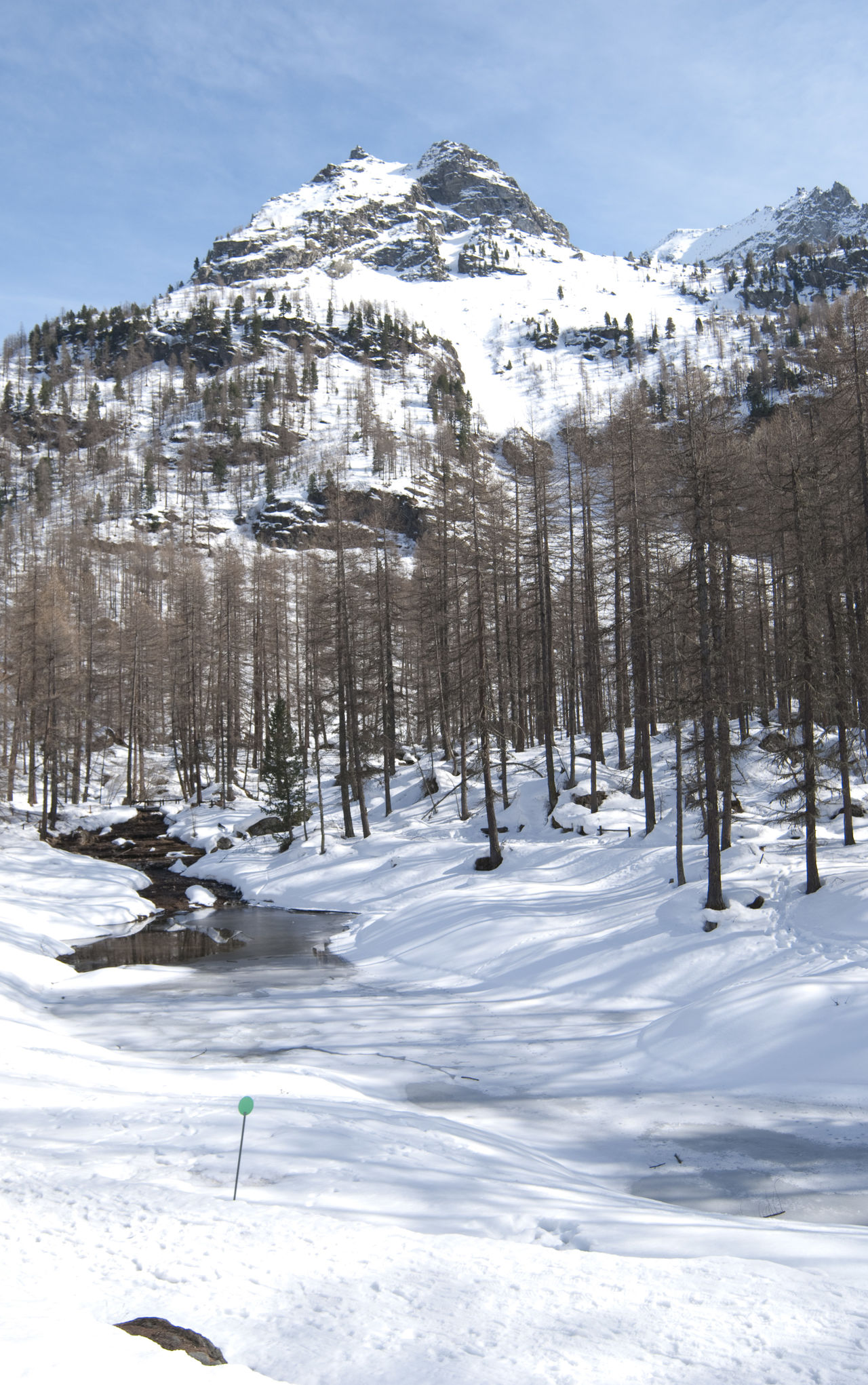 Aosta Aosta Valley Beauty In Nature Cold Temperature Mountain Outdoors Pine Woodland Snow Snowcapped Mountain Winter