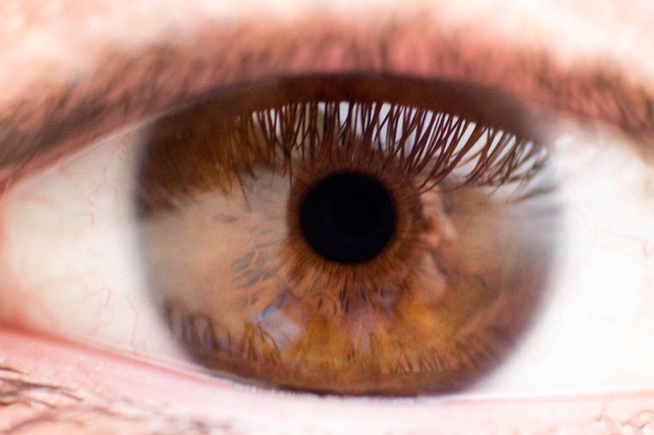 occhi marroni  EyeEm