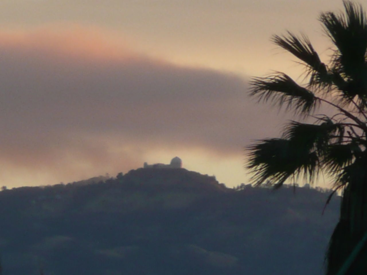sunrise with palm tree in foreground and Mount Hamilton in background Historical Building Mount Hamilton Beauty In Nature Clear Sky Close-up Day Growth Historical Landscape Lick Observatory Mountain Mountain Range Nature No People Outdoors Palm Tree Scenics Serene Outdoors Sky Sunset Tranquil Scene Tranquility Travel Destinations Tree Tropical Plants