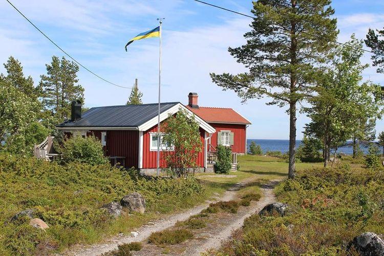 Happy midsummer from Sweden Umeå Sweden Nature Sweden-landscape Midsummer EyeEm Best Shots Eye4photography  Open Gallery