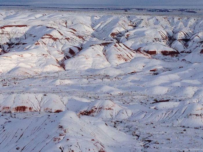 The Great Outdoors - 2016 EyeEm Awards Plainted Desert looks like giant tiramisu cake under the snow By Cathy Badi