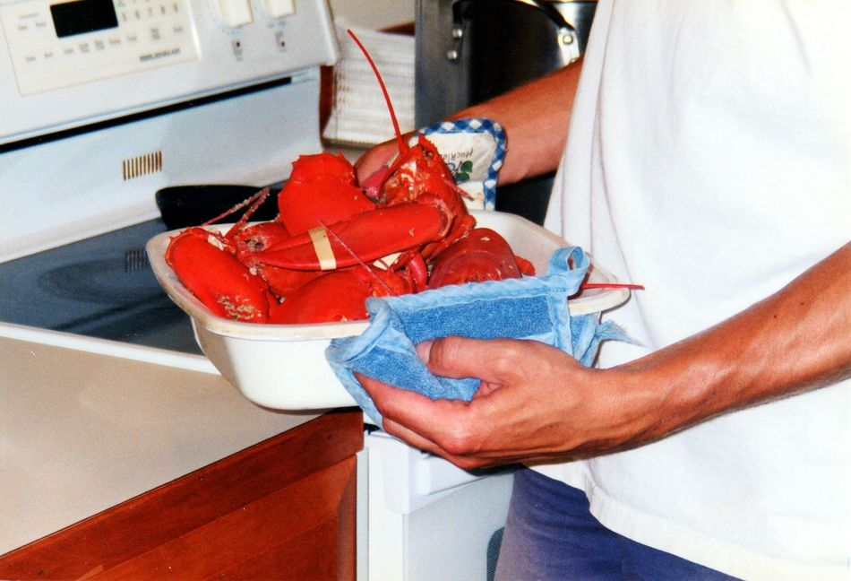 Beautiful stock photos of lobster, Close-up, Cooking, Dish Towel, Domestic Kitchen