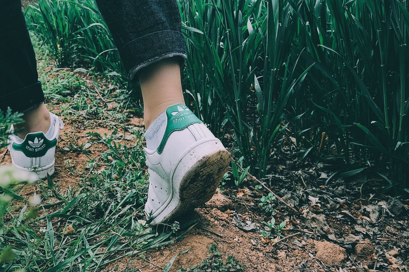 Grass Plant Adidas STAN SMITH Outdoors Nature One Person Lifestyles