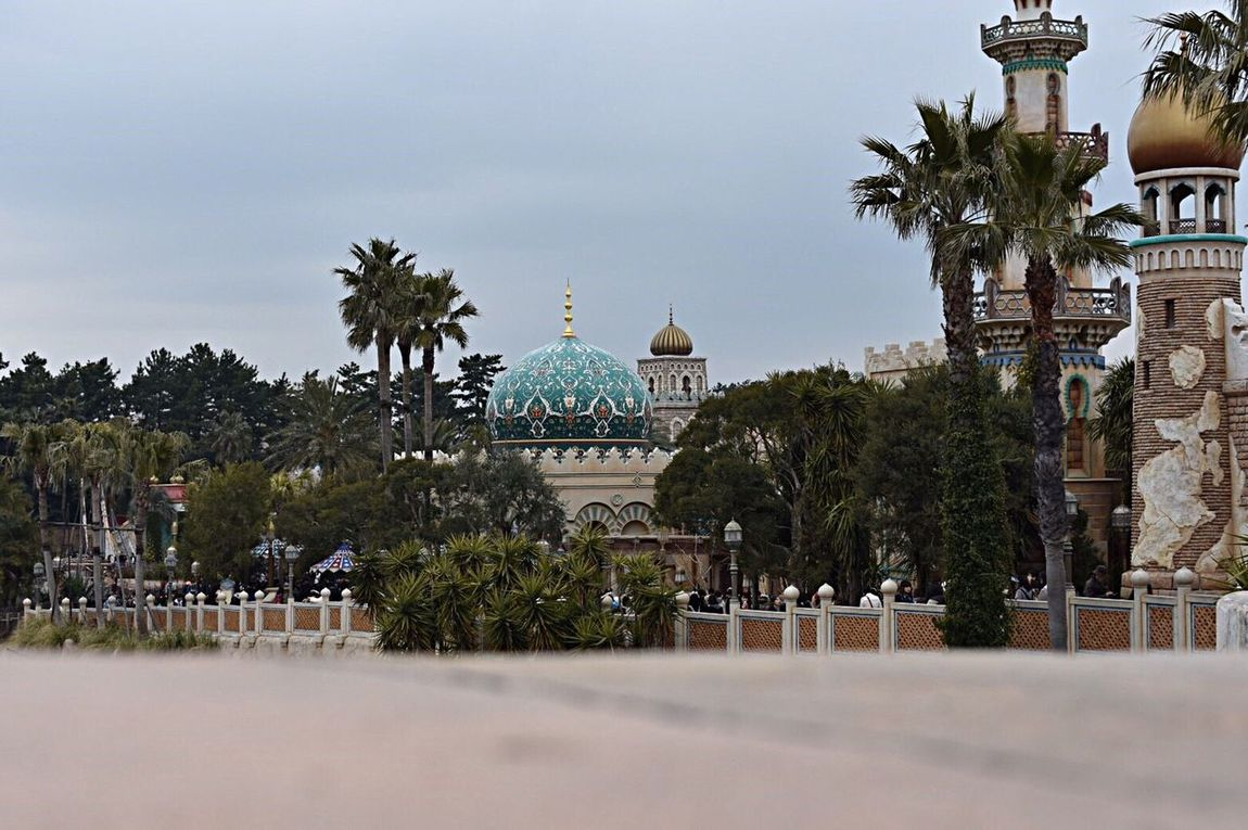 Japanese  Disney DisneySea DisneyWorld Arabian Arabiancoast View
